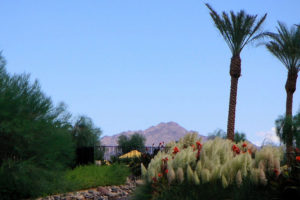 Phoenix, Arizona - Photo: Maxim B. via Flickr, used under Creative Commons License (By 2.0)